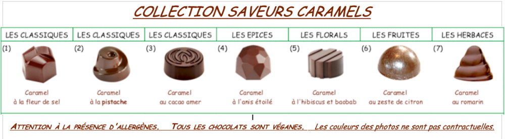 Collection de chocolats au CARAMEL Vegan Bio
