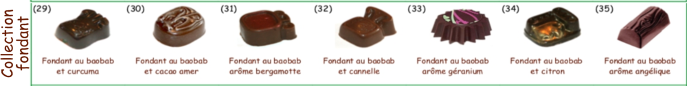 Collection de chocolats au FONDANT Vegan Bio