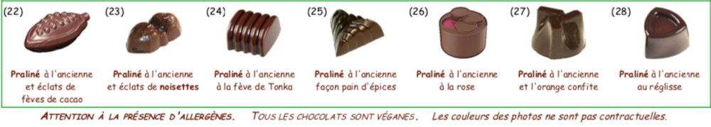 Collection de chocolats au PRALINE Vegan Bio
